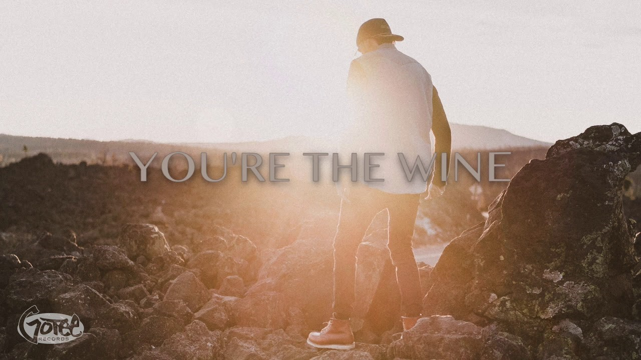 RICHLIN – You're the Wine (Visualizer)